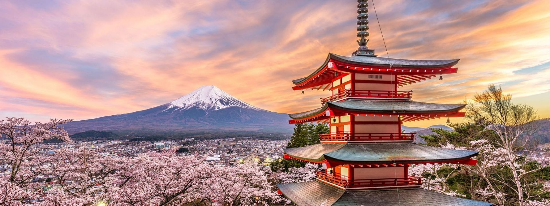 A tower surrounded by beautiful cherry blossoms