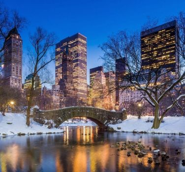 Central Park at night in winter